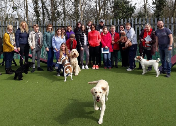 Groups of students and their dogs at a first aid event