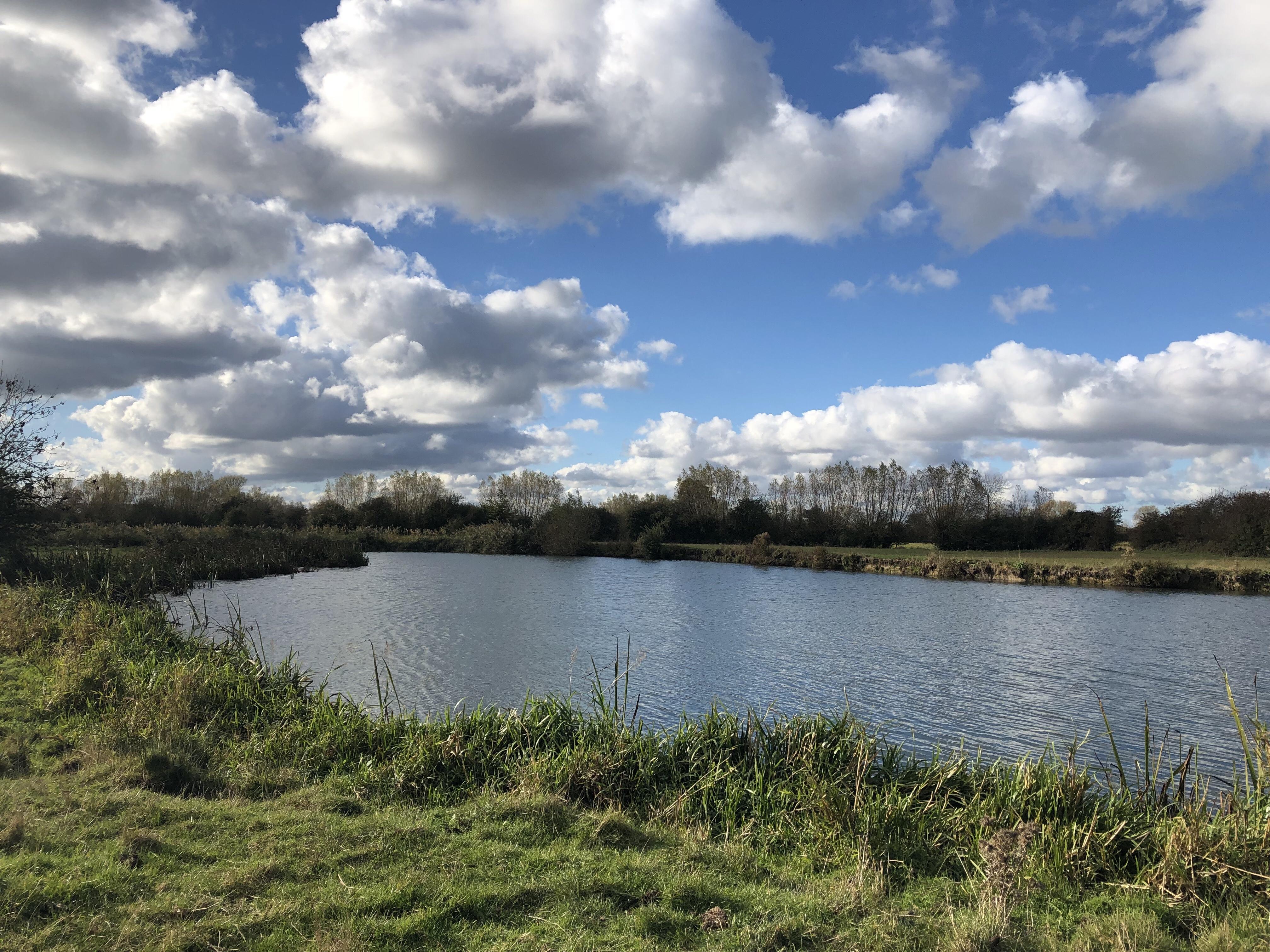 River Thames near Swinford